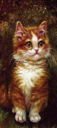 Аватар вконтакте Рыжий котенок сидит на траве