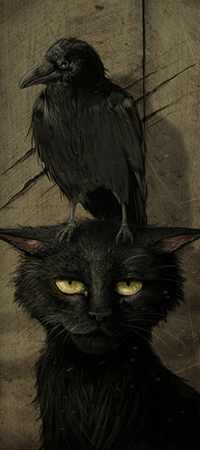 Аватар вконтакте Черный недовольный кот, на голове которого сидит ворон