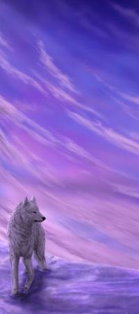 Аватар вконтакте Белый волк стоящий на снегу на фоне неба