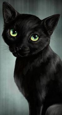Аватар вконтакте Черный кот с зелеными глазами