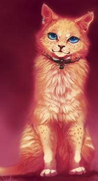Аниме рыжий кот