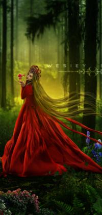 03c5517d06b Аватар вконтакте Девушка в длинном красном платье стоит в лесу ...