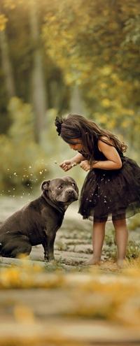 Аватар вконтакте Девочка с собакой стоят на дорожке