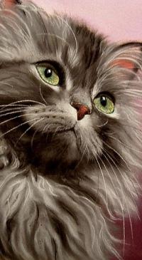 Аватар вконтакте Котенок с зелеными глазами