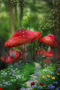 Аватар вконтакте Сказочные мухоморы на тропинке усыпанной цветами