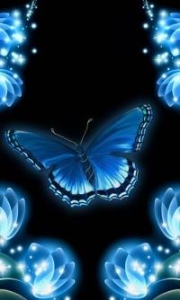 Аватар вконтакте Бабочка в окружении цветов