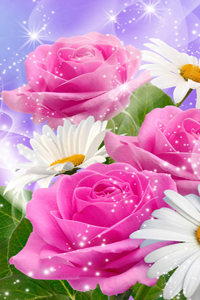 Красивые цветы скачать фотографии цветов на рабочий стол | для.