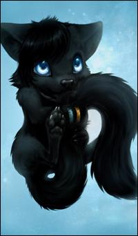 Аватар вконтакте Черный волчонок на голубом фоне