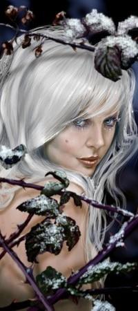 Аватар вконтакте Девушка с белыми волосами стоит за ветками с листьями в снегу, ву David Neaves