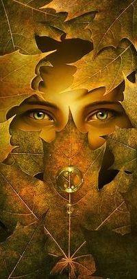 Аватар вконтакте Глаза девушки среди листьев с каплями воды, ву Артем Чебоха
