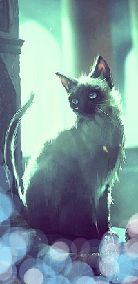 Аватар вконтакте Сиамская рисованная кошка