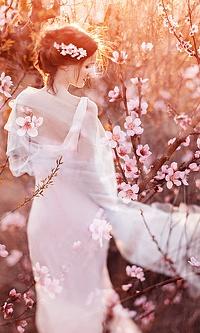 Аватар вконтакте Девушка в белом платье стоит на фоне цветущих весенних деревьев