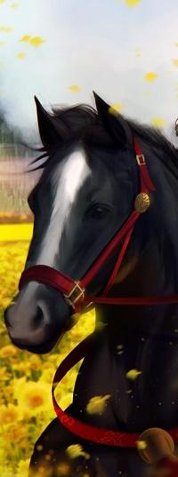 Аватар вконтакте Черная лошадь на фоне желтых цветов