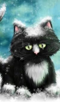 Аватар вконтакте Черный котенок в снегу