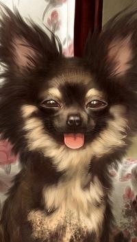 Аватар вконтакте Забавный щенок поднял вверх уши и высунул розовый язычок