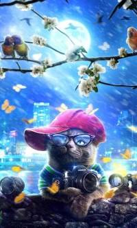 Аватар вконтакте Кот в кепке с фотоаппаратом под весенней веткой с птицами