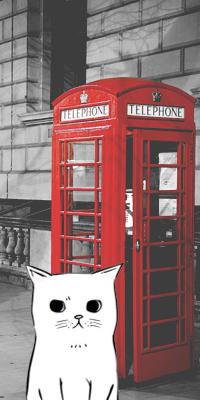 Аватар вконтакте Котик на улице Лондона