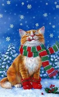 Аватар вконтакте Кот в шарфе под падающим снегом