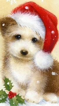 Аватар вконтакте Милый щенок в новогоднем колпаке
