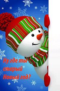 Аватар вконтакте Снеговик в поисках Нового года