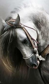 Аватар вконтакте Рисованная лошадь в сбруе
