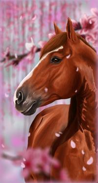 Аватар вконтакте Лошадь стоит среди цветущих веток сакуры, by Xclarxcheex