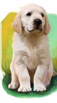 Аватар вконтакте Белый рисованный щенок