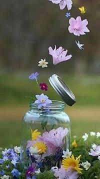 Аватар вконтакте Стеклянная баночка с цветами стоит на поляне