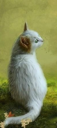 Аватар вконтакте Милый котик с рыжими ушками, by KatZaphire