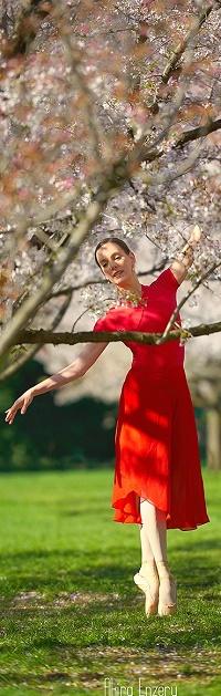 Аватар вконтакте Девушка в красном платье стоит под весенним деревом, фотограф Akira Enzeru