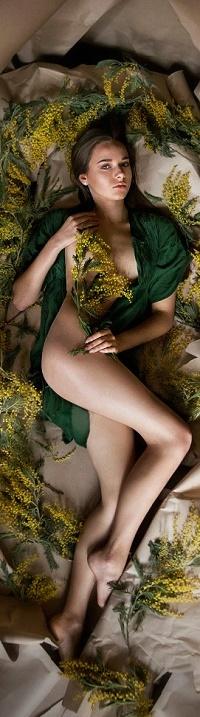 Аватар вконтакте Обнаженная девушка лежит в окружении веточек мимозы