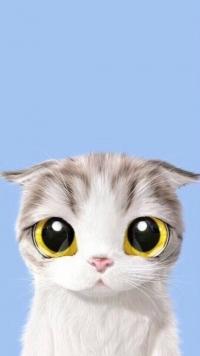 Аватар вконтакте Полосатый котенок на голубом фоне