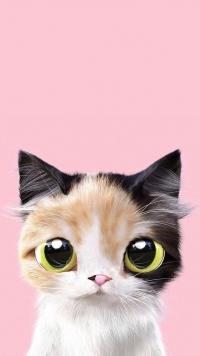 Аватар вконтакте Трехцветный котенок на розовом фоне
