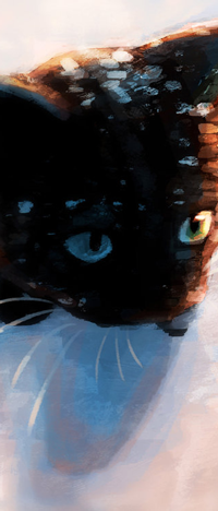 99px.ru аватар Черный котенок с зелеными глазами сидит на снегу, by Meorow