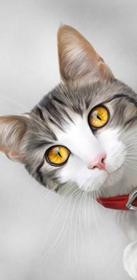 99px.ru аватар Серо-белый кот с янтарными глазами, by ThreshTheSky