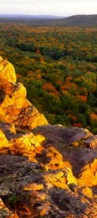 Аватар вконтакте Красивый вид с золотистой горы, море деревьев