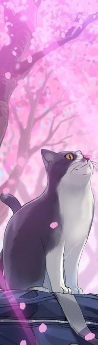 Аватар вконтакте Кот с лепестком на мордочке