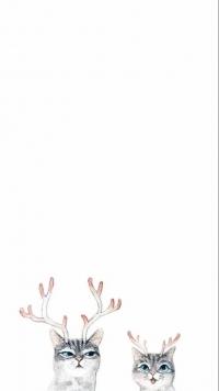Аватар вконтакте Полосатые коты с рогами на белом фоне