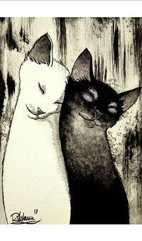 Аватар вконтакте Влюбленные белая кошка и черный кот прижались нежно друг до друга, исходник by Raphael Vavasseur