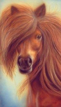 Аватар вконтакте Красивая рисованная лошадь