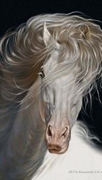 Аватар вконтакте Рисунок красивой белой лошади, by Animal75Artist