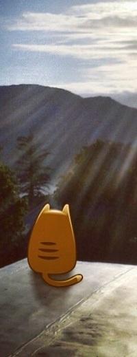 Аватар вконтакте Рыжий кот сидит на крыше