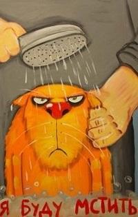 99px.ru аватар Рыжего кота моет под душем хозяин, (Я буду мстить), художник Вася Ложкин