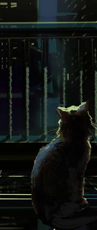 99px.ru аватар Котенок сидит на окне ночью и смотрит на город