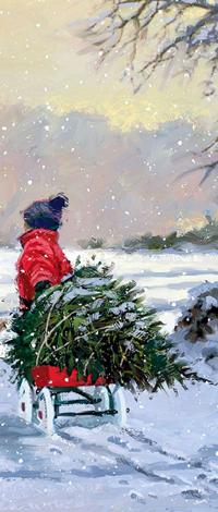 Аватар вконтакте Мальчик везет на санках новогоднюю елку по снегу