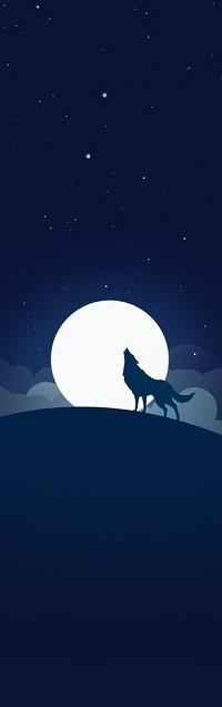 Аватар вконтакте Волк на фоне полной луны