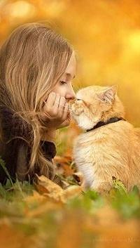 Аватар вконтакте Девочка и рыжий кот лежат на траве