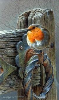 Аватар вконтакте Птичка сидит на дверной ручке, by Andrew Hutchinson