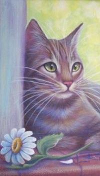 Аватар вконтакте Кошка лежит у ромашки