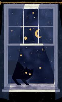 Аватар вконтакте Черный кот на окне